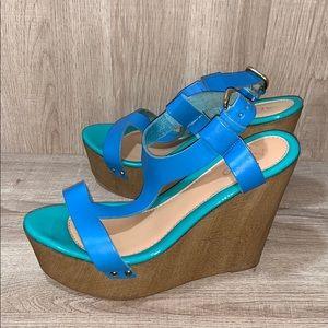 Aldo Ankle Strap Blue/Green Wooden Wedge